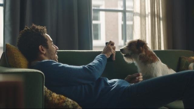 NS - Jongen en Hond