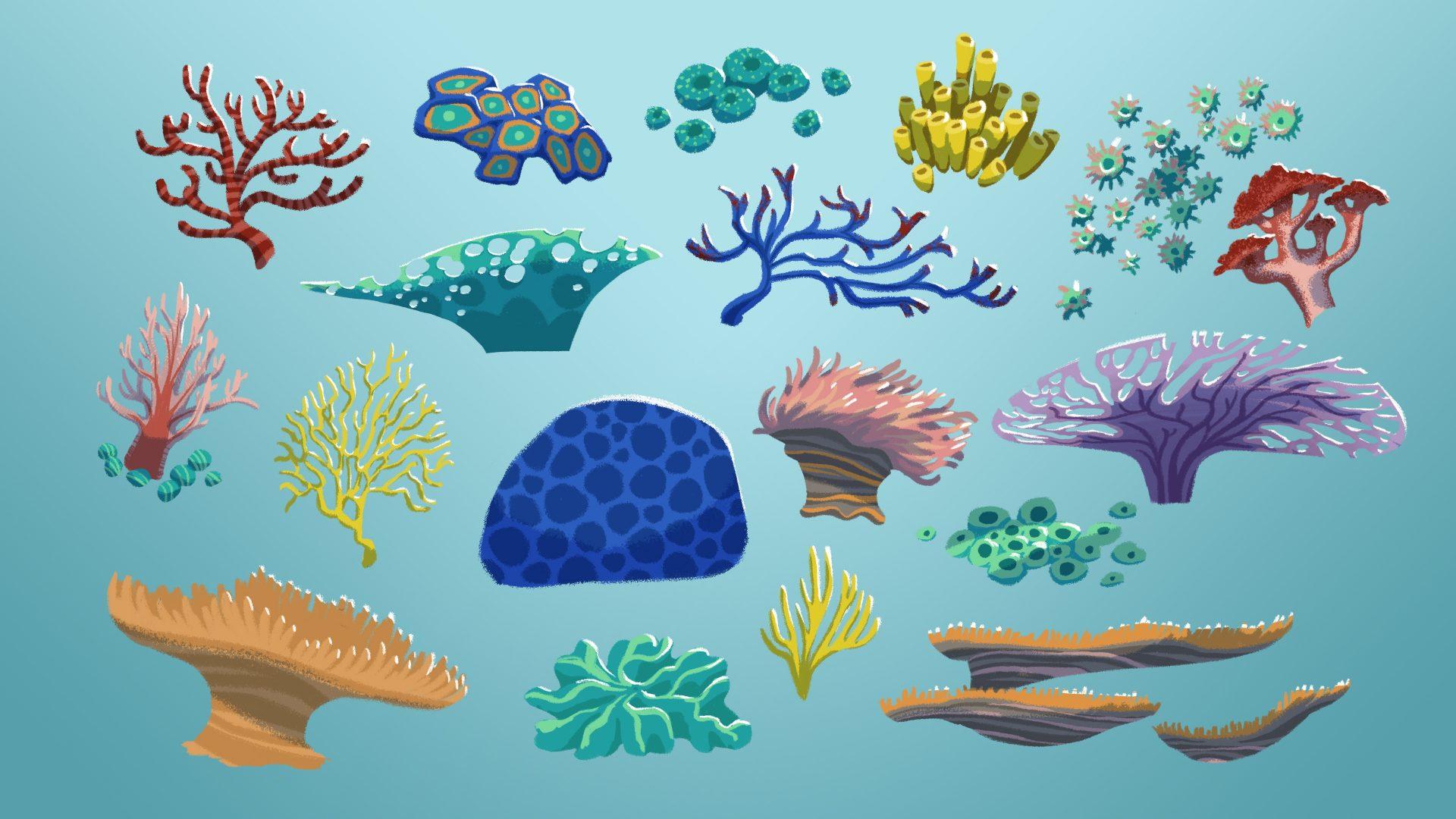 Asn Props Coral V3